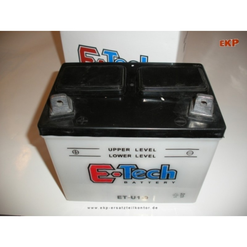Batterie 12 Volt / 24 Ah für Rasentraktoren