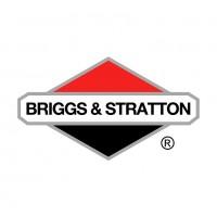 Briggs / Edke - Motor