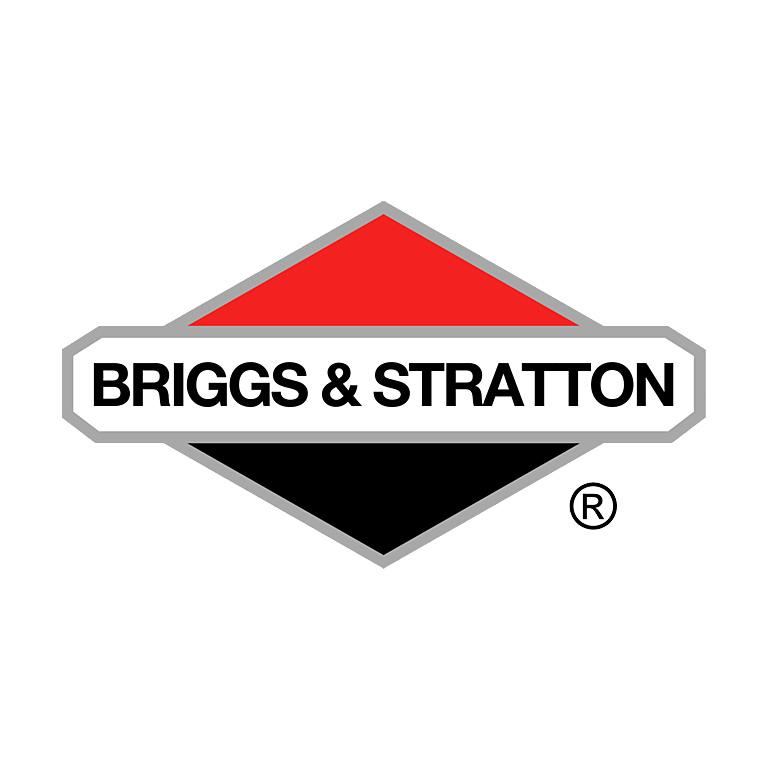 briggs-stratton.jpg